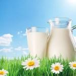 فوائد الحليب .