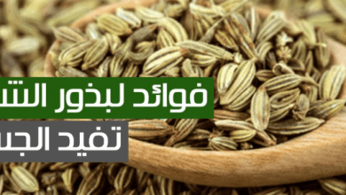 Photo of فوائد الشمر للصدر