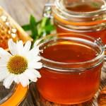 فوائد الصنوبر مع عسل النحل .