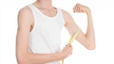 Photo of نظام غذائي لزيادة الوزن للشباب