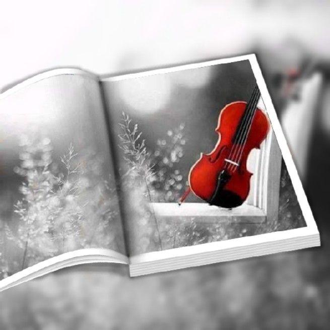 تفسير حلم الكمان