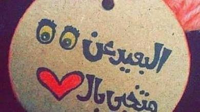 Photo of عبارات عن الحب