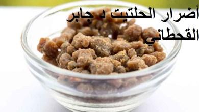 Photo of أضرار الحلتيت الدكتور جابر القحطاني