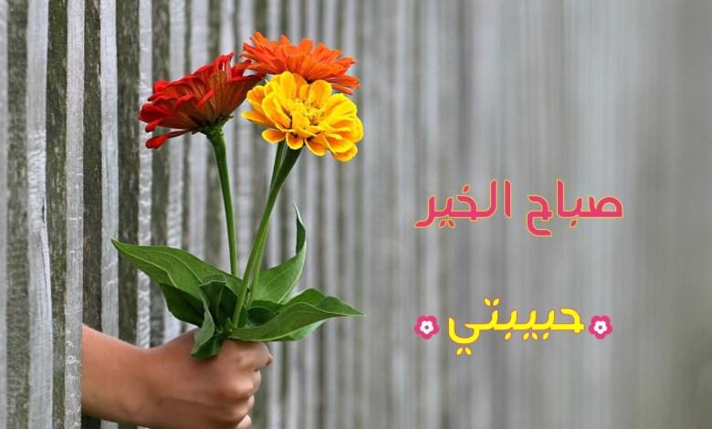 Photo of أجمل صور صباح الخير حبيبتي , صباح الورد حبيبتي