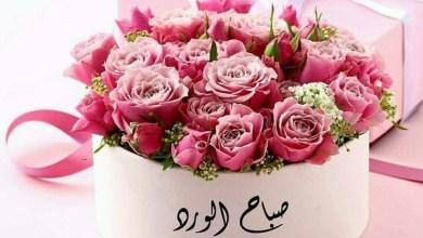Photo of صور صباح الورد , أجمل صور صباحك عسل
