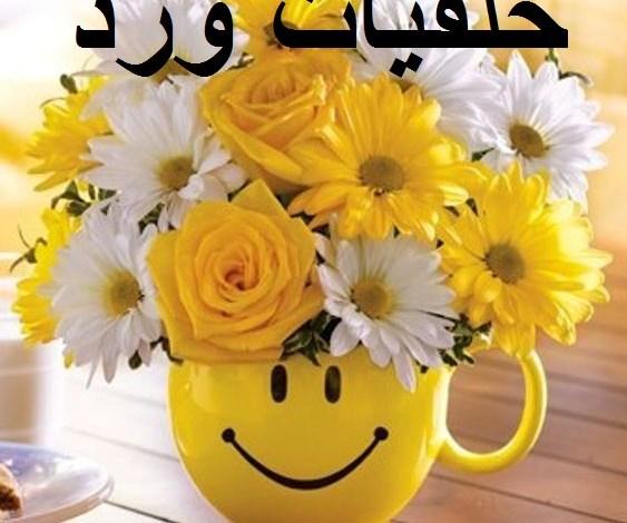 Photo of خلفيات ورد ,احلى واجمل الخلفيات واروعها
