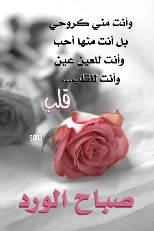 صباح العشق حبيبي اجمل حب و غرام لاحلي صباح لحبيبي مجلة رجيم