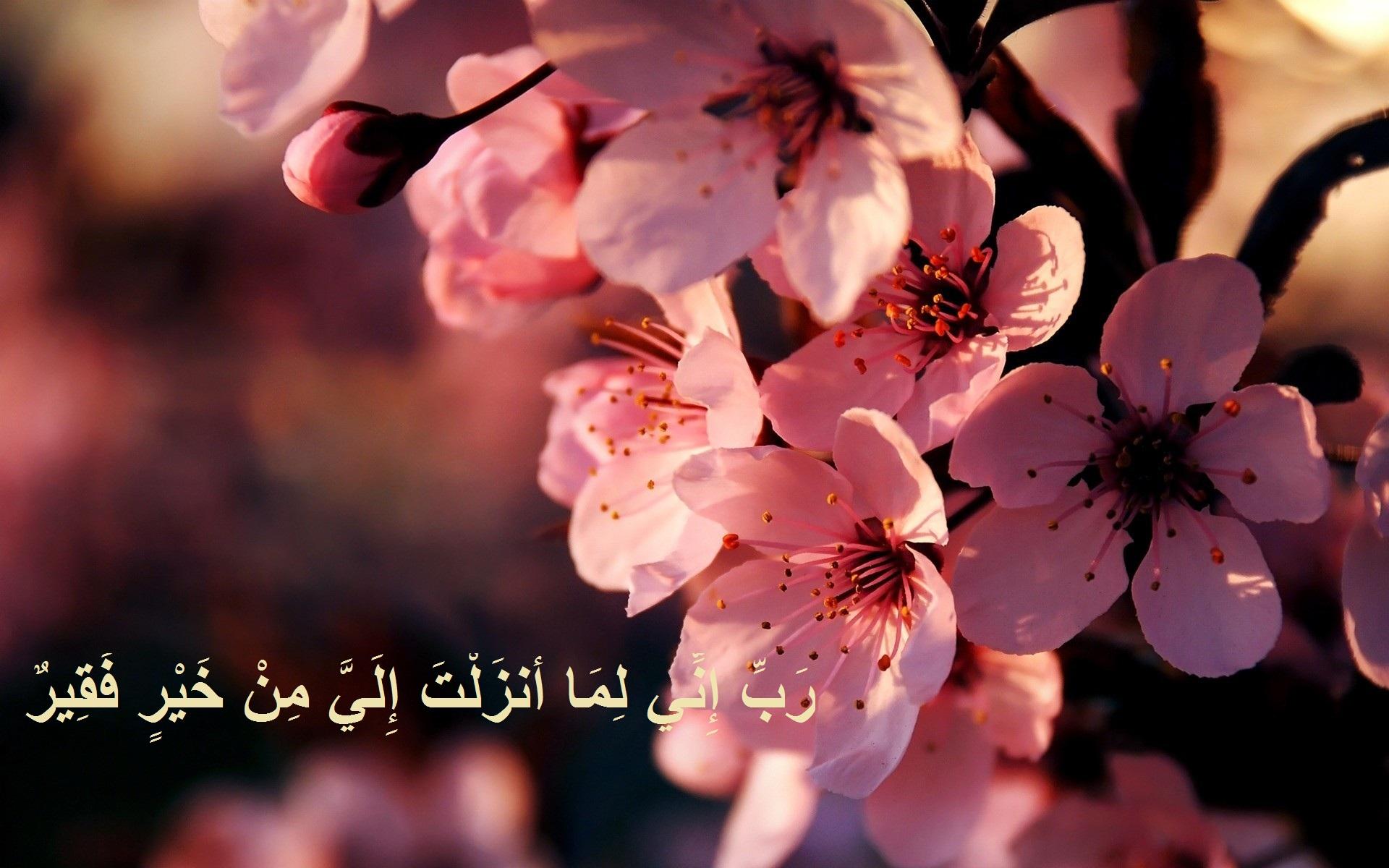 خلفيات دعاء اجمل صور خلفيات ادعية اسلاميه مجلة رجيم