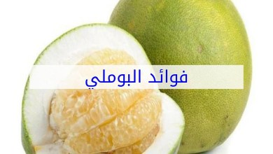 Photo of 3 فوائد مع تناول البوملي للرجيم