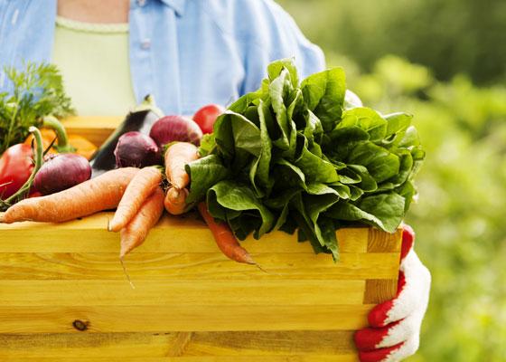 أغذية شبه منعدمة السعرات الحرارية