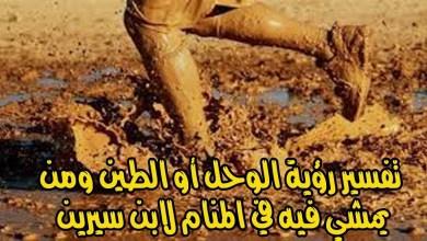 Photo of تفسير رؤية الطين أو الوحل في المنام