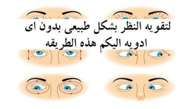Photo of أقوى الأعشاب للحفاظ على صحة العين وقوة النظر