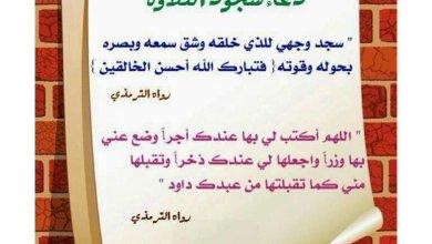 Photo of ماذا تقول عند سجودك سجدة التلاوة و أحكام متعلقة بها