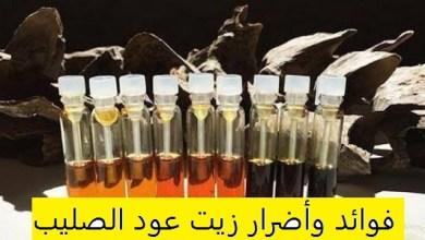 Photo of فوائد وأضرار زيت عود الصليب