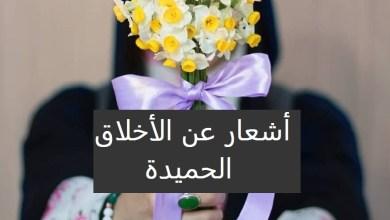 Photo of أشعار تحث على التحلي بالأخلاق الحميدة