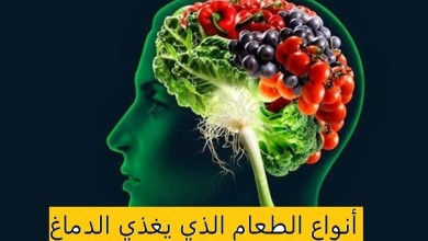 Photo of 15 نوع من الطعام يغذي الدماغ
