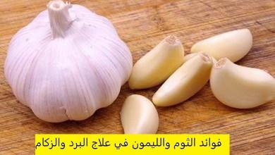 Photo of أهم فوائد الثوم والليمون للبرد