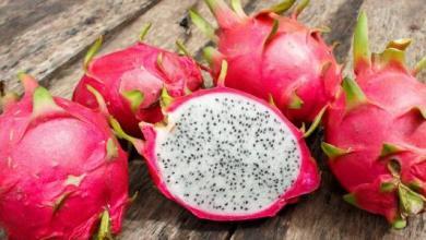 Photo of تعرف على فاكهة التنين و فوائدها للجسم و كيفية اكلها