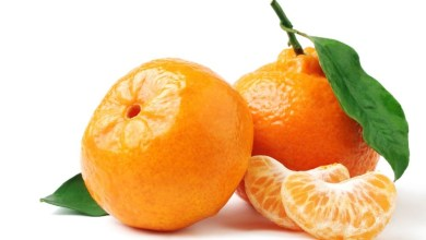Photo of فوائد فاكهة الشتاء اليوسفي لصحة و جسم المرأة