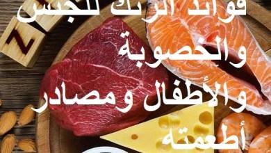 Photo of فوائد الزنك للجنس والخصوبة والأطفال ومصادر أطعمته