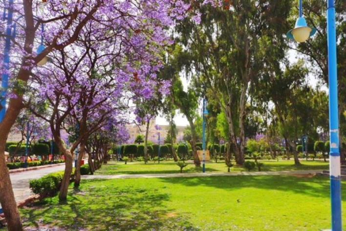 اجمل حدائق و متنزهات في ابها .