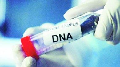 Photo of بعد نجاحه في عودة 3 مخطوفين لأسرهم.. كيف يكشف الـDNA لغز الجرائم؟