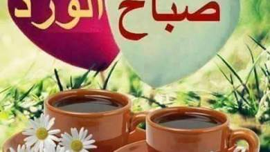 Photo of رسائل صباح الخير قصيرة وجديده