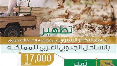 Photo of «البيئة» تعلن: انتهاء عمليات مكافحة الجراد في الموسم الشتوي