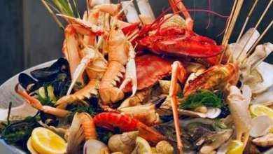 Photo of 12 فائدة لتناول الأسماك و المأكولات البحرية