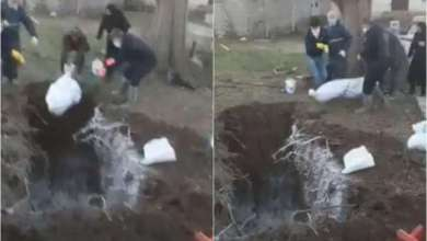 Photo of شاهد: سقوط جثة إيراني متوفي بسبب كورونا أثناء دفنها داخل حفرة عميقة