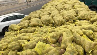 Photo of بالصور: ضبط شاحنتين محملتين بـ51 طن بطاطس فاسدة قبل توزيعها بالدمام