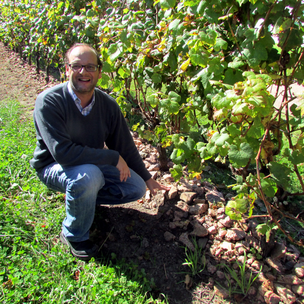 Eduardo Boido explaining placement of rocks under the vines