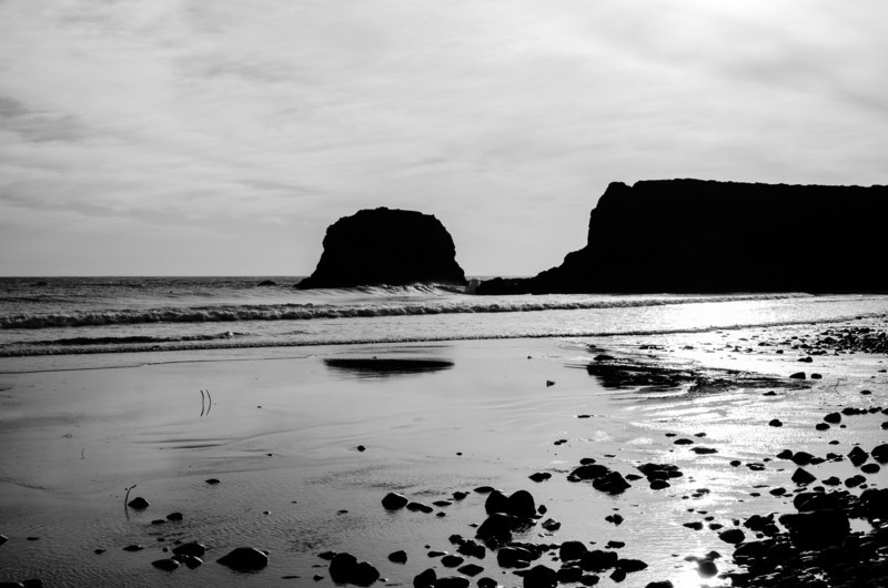 Andrew Molera State Beach 1
