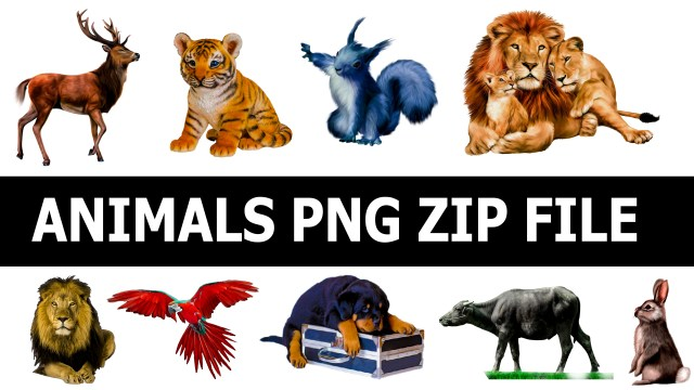 Hd Animals Png Zip File, Animal Hd Png, wild Animals png