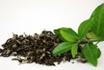 Green Tea absolute cure for restless legs syndrome
