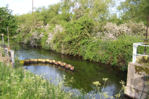 An area in the South Lagoons part of the Thames Water Works. (Roger Emmens)