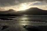 Group outing: BTO Non-Estuarine Waterbird Survey of Skye