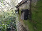 Managing our nestboxes