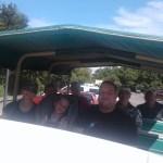 Wild Horse Tour