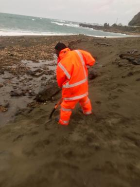Crews cleaning up toxic sludge washed out from the old tip at Houghton Bay in Wellington.