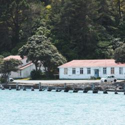 Shelly Bay opponents Mau whenua short $2.2m after losing backer