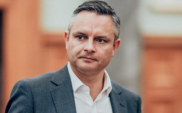 Green Party co-leader James Shaw