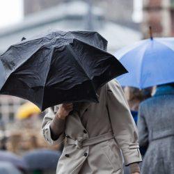 Upper North Island set for heavy rain, wind, thunderstorms