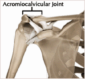 AC Joint Illustration.WEB