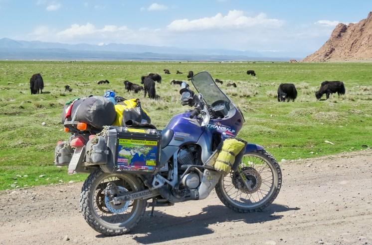 Honda Transalp in Mongolia