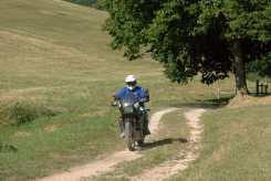 elcito-all-terrain-honda-transalp