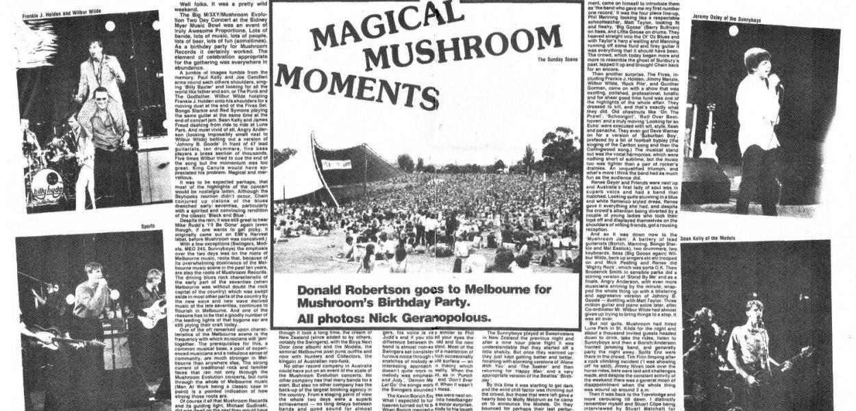 Magical Mushroom Moments