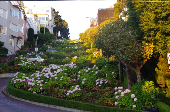 Lombard Street - Exploring San Francisco - learn more on Road Trips around the World - www.RoadTripsaroundtheWorld.com