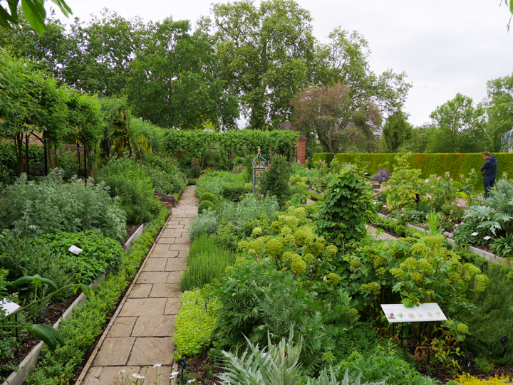 Kew-Palace-Garden-London-UK-herb garden 2