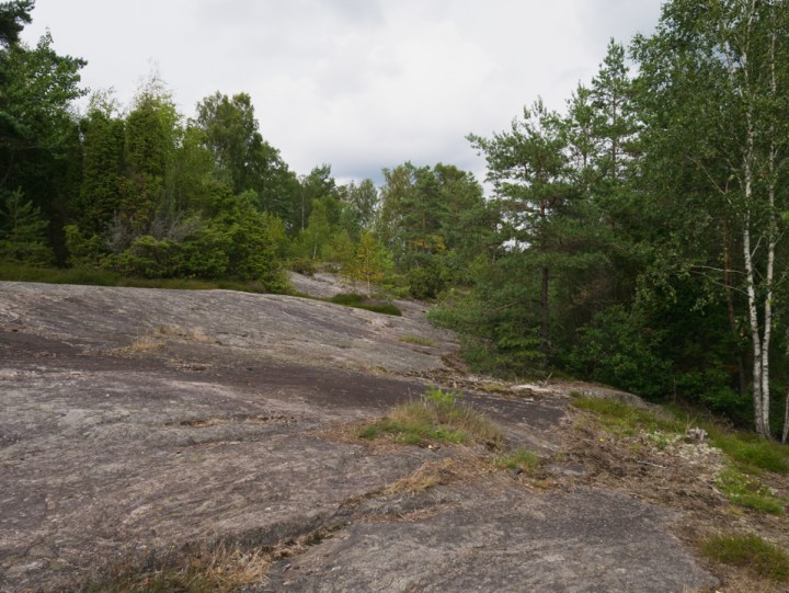 Tanum rock carvings - Sweden - up to the burial mounts